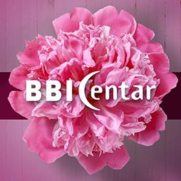 BBI 8. March